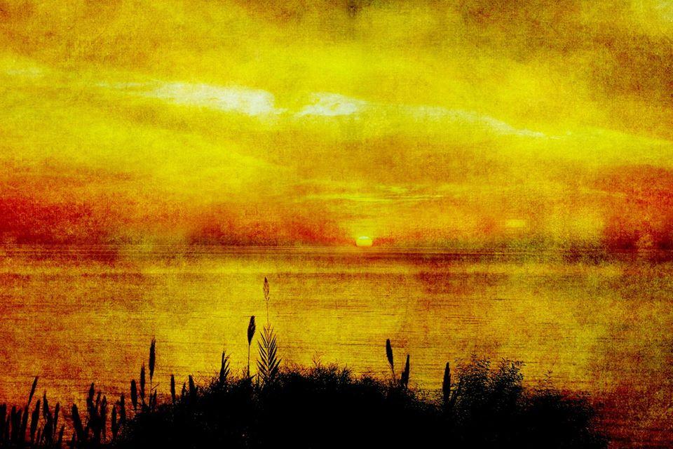 La Récolte – Maria Diallo